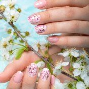 Λουλούδια νυχιών